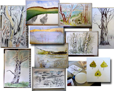 Sketches - St Aidan's Nature Reserve
